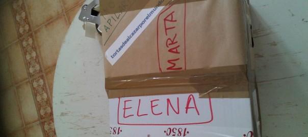 Pedido a medias de embalar Marta y Elena